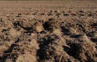 संकट में भूमि