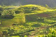 उत्तराखंड की बदलती संस्कृति